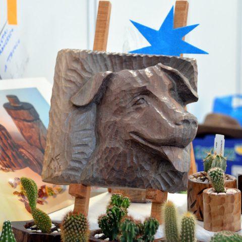 mondo-bonsai-2016-parte1-13