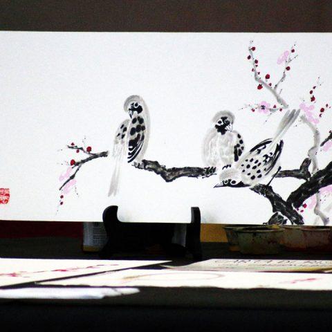mondo-bonsai-2017-07